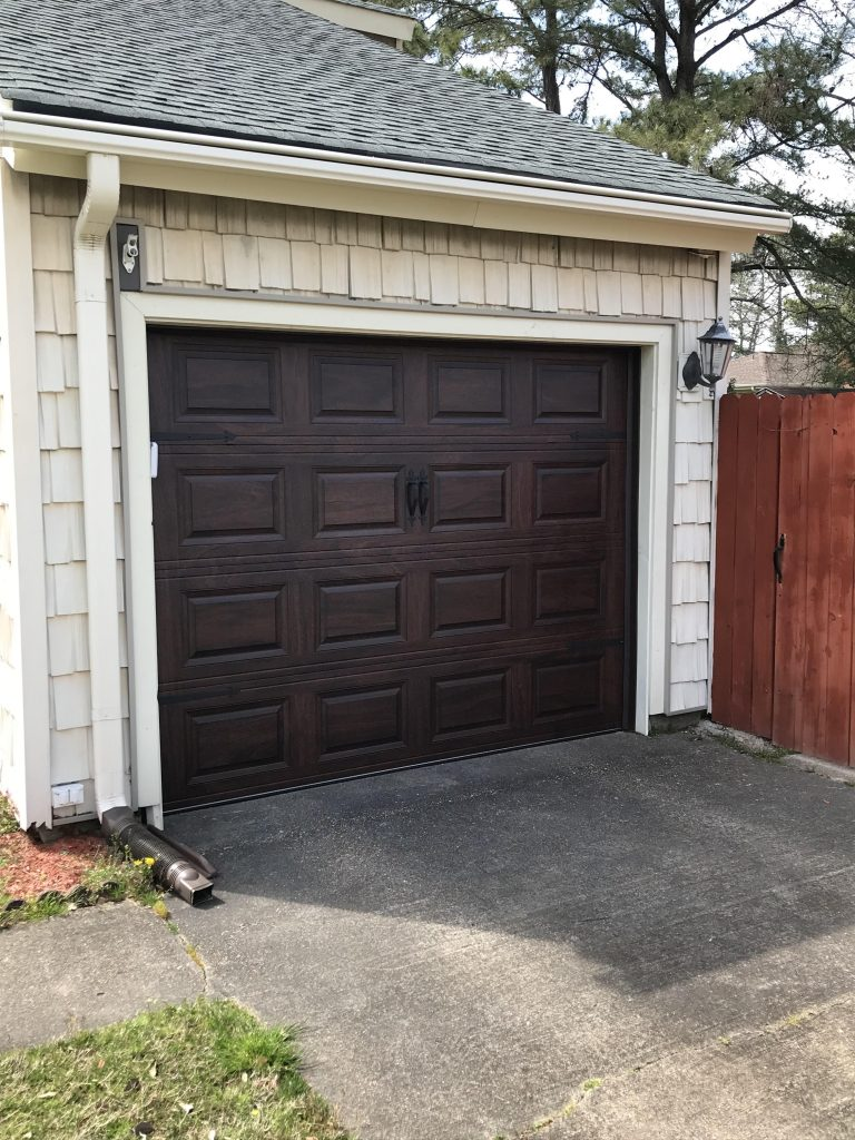 Img 4468 Lion Garage Door Raleigh